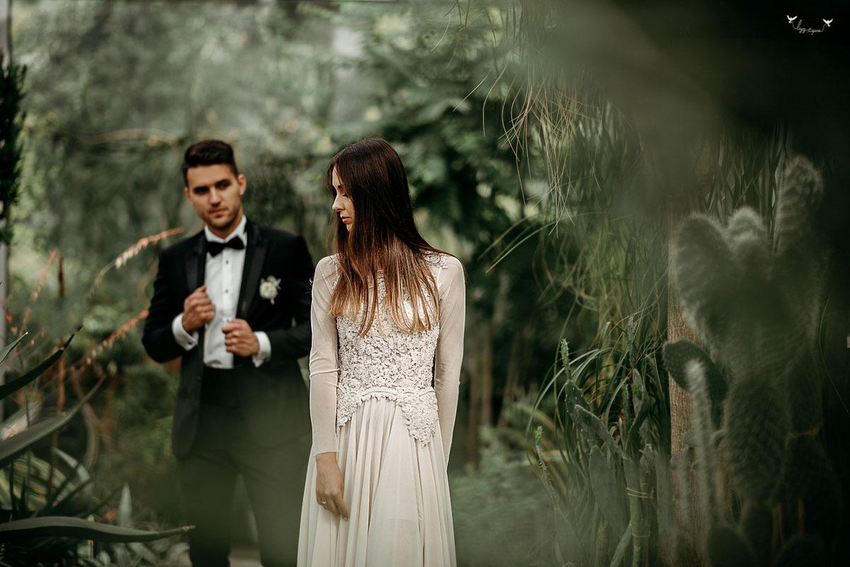 vestuviu fotosesija oranzerijoje