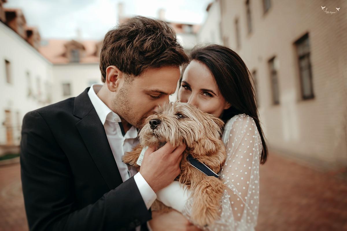 vestuviu fotosesija su šuniuku